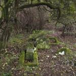 Zahájení revitalizace zdevastovaného hřbitova ve Svatoboru