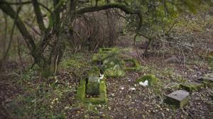 2016.10 Zahájení revitalizace zdevastovaného hřbitova ve Svatoboru 03