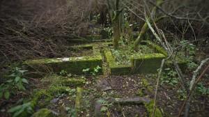 2016.10 Zahájení revitalizace zdevastovaného hřbitova ve Svatoboru 06