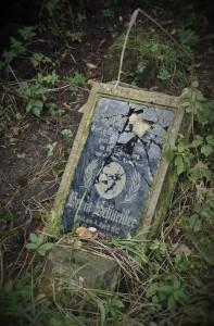 2016.10 Zahájení revitalizace zdevastovaného hřbitova ve Svatoboru 11
