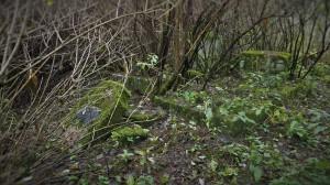 2016.10 Zahájení revitalizace zdevastovaného hřbitova ve Svatoboru 12