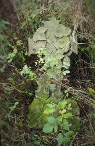 2016.10 Zahájení revitalizace zdevastovaného hřbitova ve Svatoboru 15