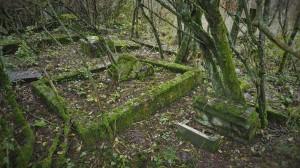 2016.10 Zahájení revitalizace zdevastovaného hřbitova ve Svatoboru 17