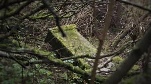 2016.10 Zahájení revitalizace zdevastovaného hřbitova ve Svatoboru 19