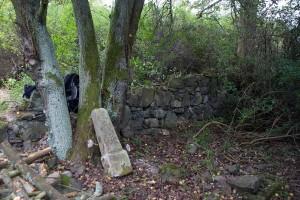 2016.10 Zahájení revitalizace zdevastovaného hřbitova ve Svatoboru 25