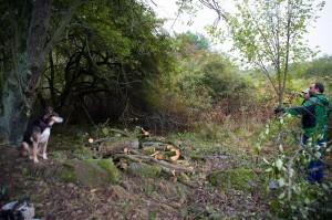 2016.10 Zahájení revitalizace zdevastovaného hřbitova ve Svatoboru 26