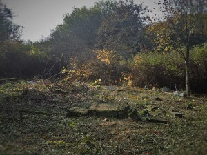 Revitalizace hřbitova ve Svatoboru